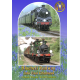 Bluebell Railway into East Grinstead DVD